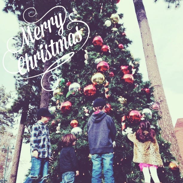 merry christmas {image via simply happenstance}