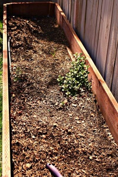 Spring Garden Boxes