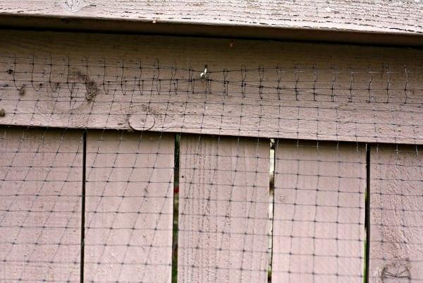 Spring Garden Boxes Fence Hooks