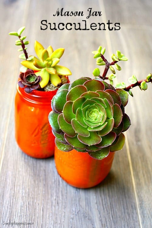 Easy Do It Yourself Mason Jar Succulents. Perfect for end of the school year gifts for teachers.