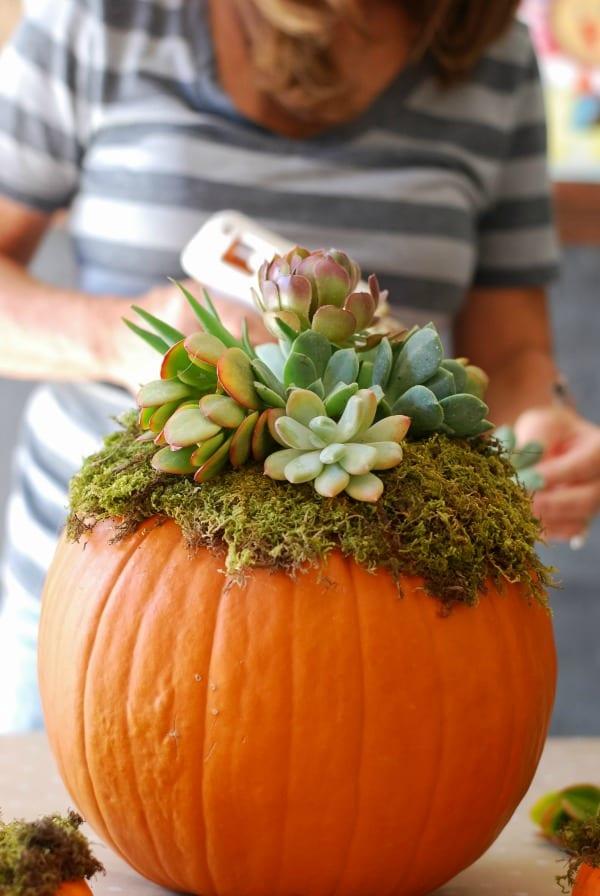 Pumpkin Succulent Arrangement {simplyhappenstance.com}-61