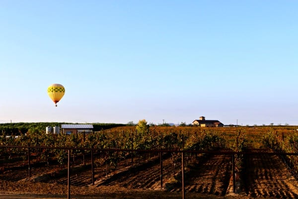 Lorimar Winery in Temecula. Lorimar Sleepover