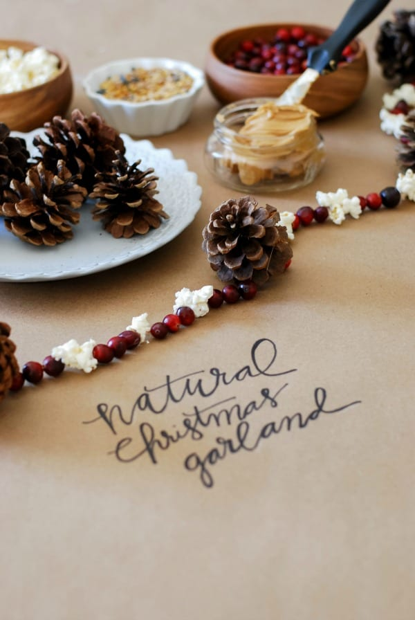 Natural Christmas Garland  DIY via Simply Happenstance-112