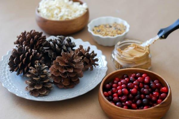 Natural Christmas Garland  DIY via Simply Happenstance-35