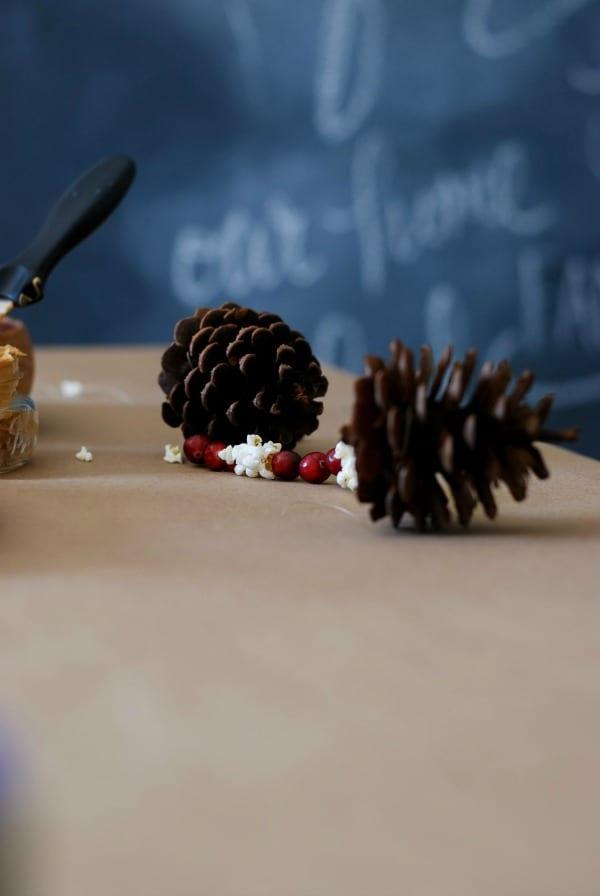 Natural Christmas Garland  DIY via Simply Happenstance-56