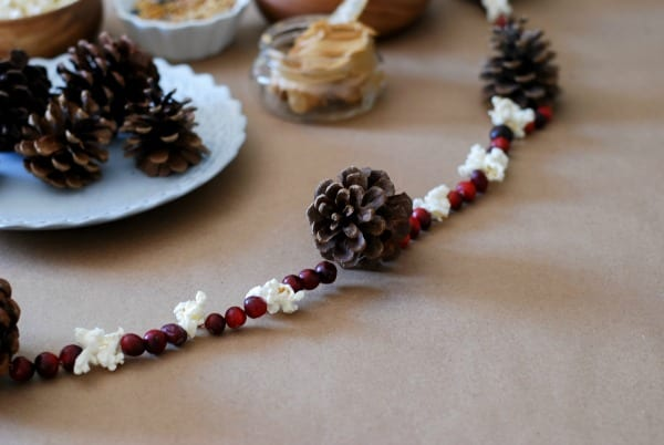 Natural Christmas Garland  DIY via Simply Happenstance-68