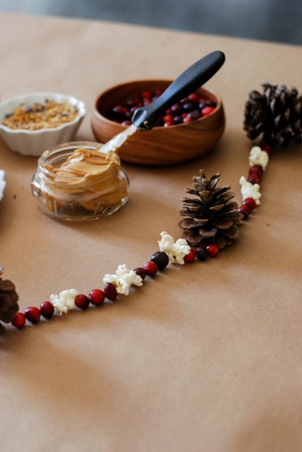 Natural Christmas Garland  DIY via Simply Happenstance-80