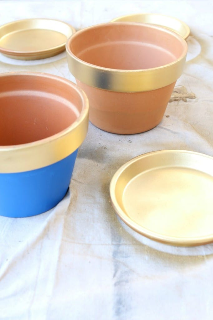 spray painted pots painted blue and gold