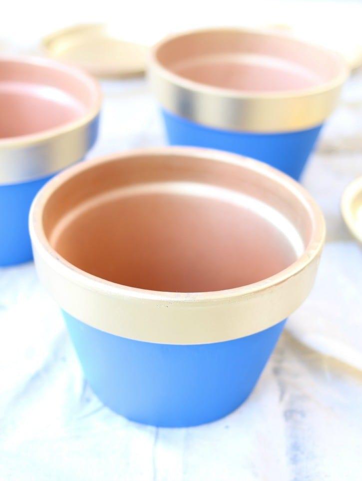 blue and gold succulent pots