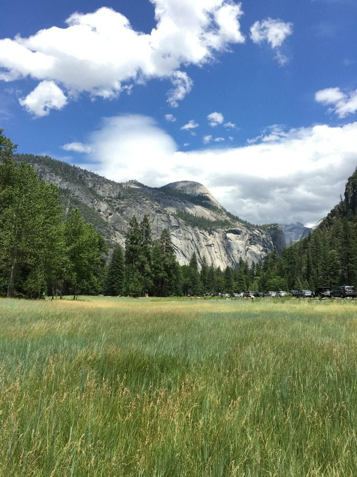 Yosemite in the summer.
